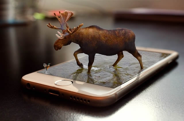 smartphone future