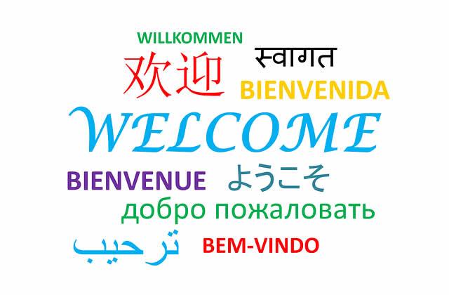 fluent in languages